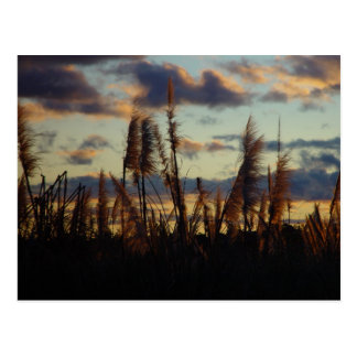 Posluminiscencia de la puesta del sol a través de  postal