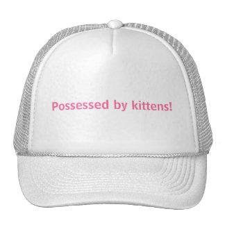 Possessed by kittens! trucker hat