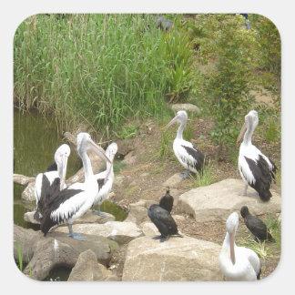 Possible Plotting Pelican Problems Sticker