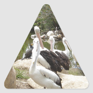 Possible Plotting Pelican Problems Triangle Sticker