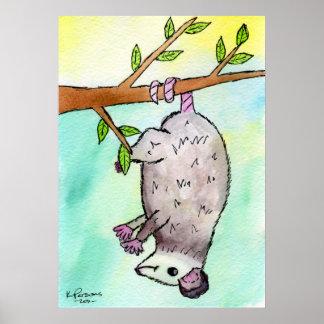 Possum Danglin' Poster