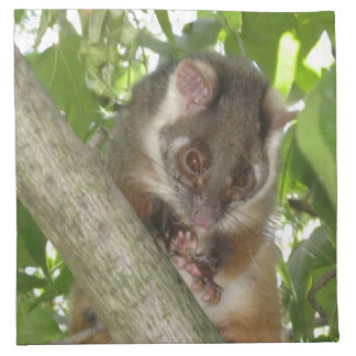Possum In A Tree Napkin