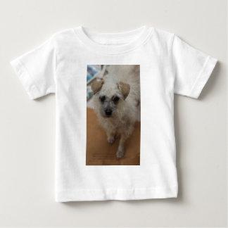 Possum Shirt