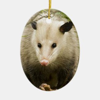 Possums are Pretty - Opossum Didelphimorphia Ceramic Ornament