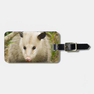 Possums are Pretty - Opossum Didelphimorphia Luggage Tag