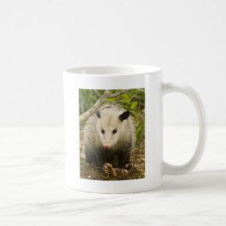 Possums are Pretty - Opossum Didelphimorphia Classic White Coffee Mug