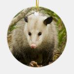 Possums are Pretty - Opossum Didelphimorphia Christmas Ornament