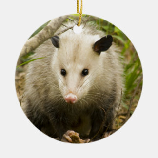 Possums are Pretty - Opossum Didelphimorphia Double-Sided Ceramic Round Christmas Ornament