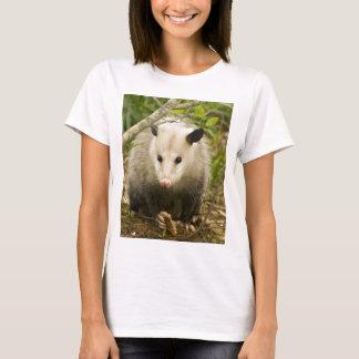 Possums are Pretty - Opossum Didelphimorphia T-Shirt