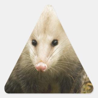 Possums are Pretty - Opossum Didelphimorphia Triangle Sticker