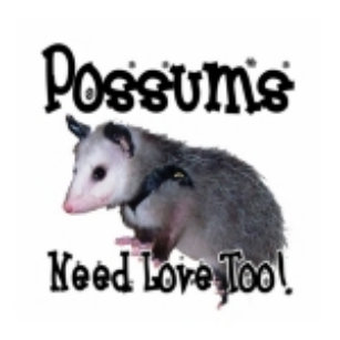 Opossum Accessories Zazzle