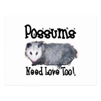 Possums Need Love Too Postcard