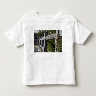 Post and Rail Fence Shirt