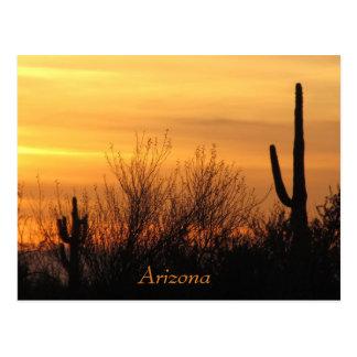 Post Card--Arizona Sunset-3 Postcard