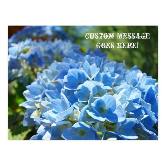 Post Cards Nature Custom Business Hydrangeas