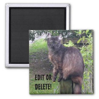 Post Cat Magnet