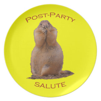 Post-Party Salute Melamine Plate