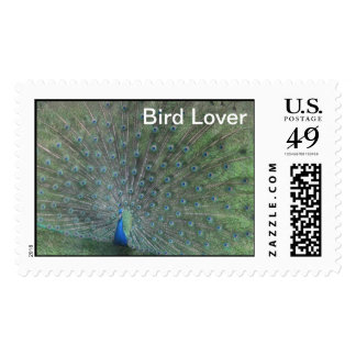 Postage/Birds/Peaky the Peacock, backyard birds Postage