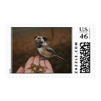Postage - Chickapug or Pugadee? (Color)
