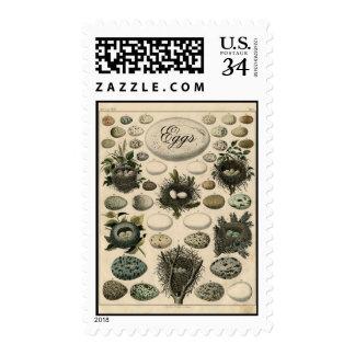 Postage for Postcards