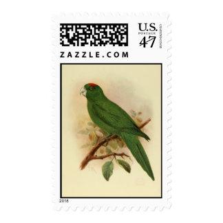 Postage Guadeloupe Parakeet Extinct 1908