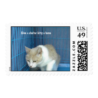 Postage Kitty-in-Cage, Give a shelter kitty a home
