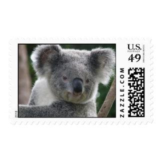 Postage Koala Australia Postage