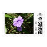 Postage: Lighted Purple Beauty