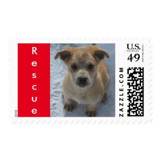 Postage - Rescue