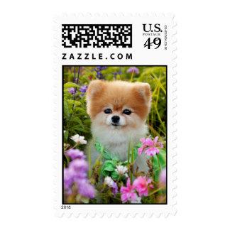 Postage Stamp - Bella's Garden