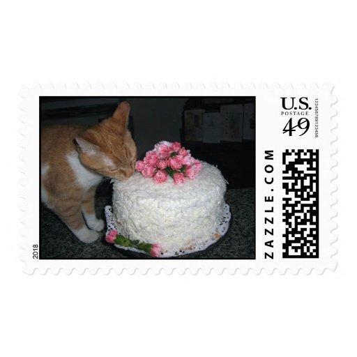 postage stamp cat eats wedding cake