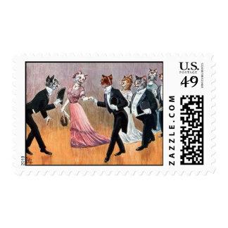 postage stamp cat postcardcats ballroom dancing
