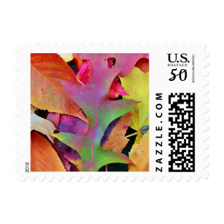 Postage Stamp -  Colorful Fall Leaves