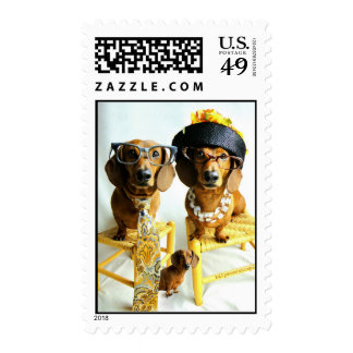 Postage Stamp: Doxie Family