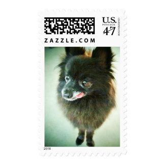 Postage Stamp - Iowa Dorothy