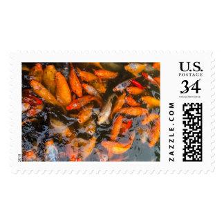 Postage Stamp - Koi carp