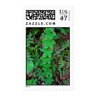 postage stamp - leaf chain