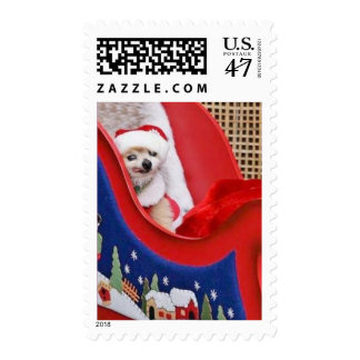 Postage Stamp - Linus the Little Pommie