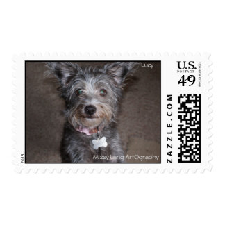 Postage Stamp Lucy by Missy Lang ArtOgraphy