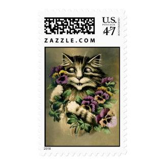 postage stamp vintage cat w pansies postcard