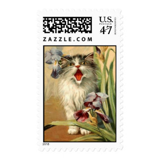 postage stamp vintage postcard cat & Iris flowers