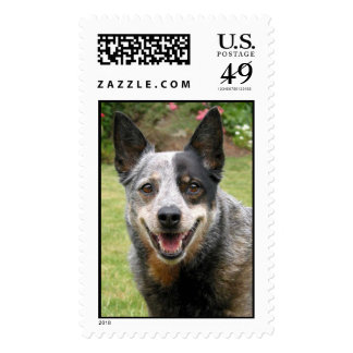 Postage stamp with dog