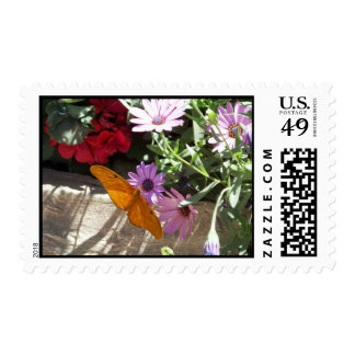 postage stamp with orange butterfly
