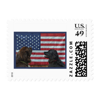 Postage Stamps ~