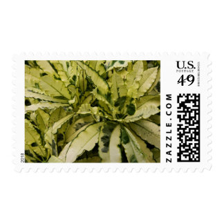 Postage Stamps - Andrew Croton