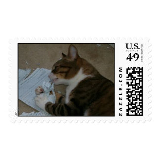 Postage Stamps: Cat Ate My Homework