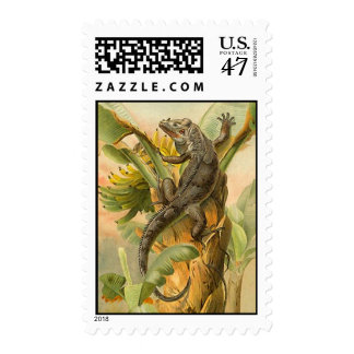 POSTAGE STAMPS Iguana Lizard Crawl Climbing Up
