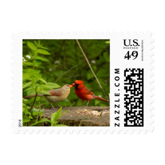 Postage stamps Kissing Cardinals