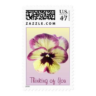 Postage Stamps - USPS - Burgundy Blotch Pansy