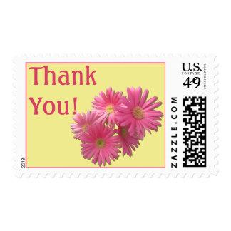 Postage Stamps - USPS - Dark Pink Gerbera Daisies